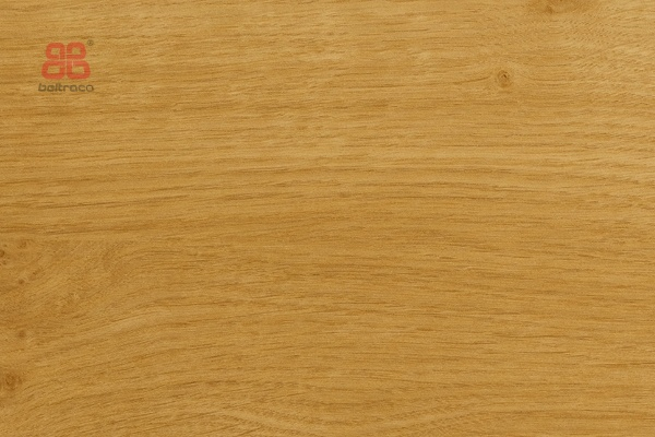 Renolit 3211005 Irish oak (96006)